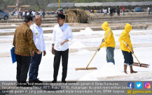 Presiden Jokowi Tinjau Produksi Garam di NTT - JPNN.COM