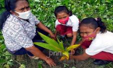 Gerakan Penanaman Pohon Bersama YPA-MDR - JPNN.com
