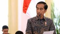 Jokowi Mau Divestasi Freeport Rampung Sebelum Tahun Baru - JPNN.COM