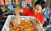Harga Cabai Rawit dan Bawang Merah Hari Ini - JPNN.COM