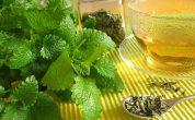 Yuk Bersihkan Usus dengan 6 Jenis Herbal ini - JPNN.COM