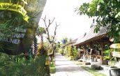Belajar Kelola Desa Wisata dari Nglanggeran Yuukkk.... - JPNN.COM