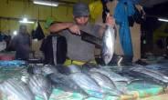 Ikan Cakalang, Sorihi, Komo, Kakap, Semua Naik - JPNN.COM