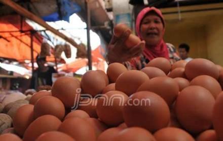 Kementan Gerojok Pasar dengan Telur Ayam, Rp 19.500 per Kg - JPNN.COM