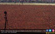 Luar Biasa! 12.262 Orang Menarikan Tari Saman, Pecahkan Rekor MURI - JPNN.COM