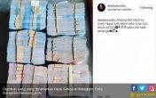 Dewi Sanca Pamer Uang dari Papap, Kemendagri Bakal Turun Tangan - JPNN.COM