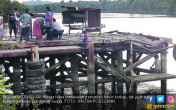 Ritual di Sungai, Pawang Diterkam Buaya Muara - JPNN.COM