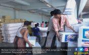 Indonesia Kirim Bantuan untuk Etnis Rohingya di Myanmar - JPNN.COM