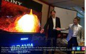 Bravia OLED, Jagoan Terbaru Sony Indonesia - JPNN.COM