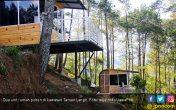 Sensasi Tidur di Rumah Pohon di Taman Langit dan Omah Kayu - JPNN.COM