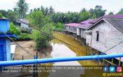 Buaya Putih Penunggu Sungai Menampakkan Diri - JPNN.COM