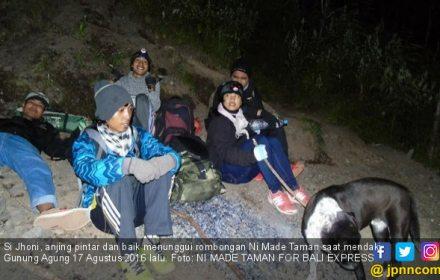 Jhoni si Anjing Penunggu Gunung Agung, Semoga Kau Selamat - JPNN.COM