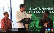 Presiden Jokowi Dorong Petani Berkelompok Bentuk Korporasi - JPNN.COM