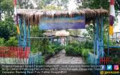 Program KRPL Kementan Hemat Rp 700 Ribu per Rumah Tangga - JPNN.COM