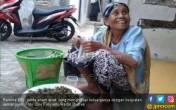 Janda Miskin Ogah Mengemis, Wakafkan Tanah untuk Musala - JPNN.COM