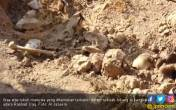 Lubang Berisi 400 Mayat Korban ISIS Ditemukan di Iraq - JPNN.COM