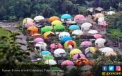 Sensasi Omah Domes Pelangi dari Atas Bukit Teletubbis - JPNN.COM