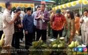 Komisi IV DPR Tinjau Balai Penelitian Tanaman Palma - JPNN.COM