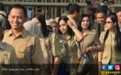 Honorer Lolos Seleksi CPNS, Kontrak Langsung Diputus - JPNN.COM