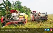 Tiga Tahun Era Jokowi, Jumlah Petani Miskin Menurun - JPNN.COM