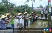 Flores Timur Siap Dukung Swasembada Pangan Nasional - JPNN.COM
