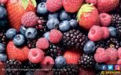Kenali 7 Makanan yang Kaya Antioksidan - JPNN.COM