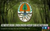 KLHK Menang Gugatan Kasus Karhutla Senilai Rp 979 Miliar - JPNN.COM