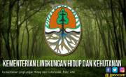 Klaim Tisu Bisa Disiram Palsu, Perusahaan Didenda 7,4 miliar - JPNN.COM