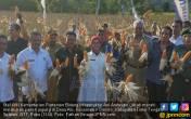 Kementan Dorong NTT Ekspor Jagung - JPNN.COM