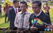 Jaket Baru Jokowi Boleh Juga, Bagi-Bagi, Pak! - JPNN.COM