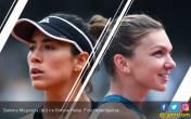 Halep vs Muguruza, Semifinal Roland Garros Serasa Final - JPNN.COM