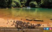 Merasakan Suasana ala Negeri Dongeng di Taman Nasional Babul - JPNN.COM