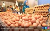 Harga Ayam dan Telur Naik, Lumayan nih - JPNN.COM