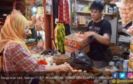 Harga Telur Sudah Mendekati Rp 2.000 per Butir - JPNN.COM