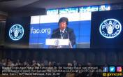 Menteri Siti: Indonesia Melakukan Perubahan Besar - JPNN.COM