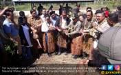 Komisi IV Lepasliarkan Kanguru di Taman Nasional Wasur - JPNN.COM