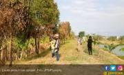 Kisah Tiga Pekerja Indonesia Berpuasa di Pedalaman Australia - JPNN.COM