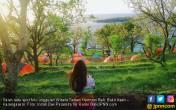 Yuk Berburu Paket Wisata Murah di Traveloka Fair - JPNN.COM
