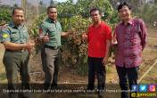Pangan Lokal Beri Banyak Manfaat, Nilai Impor Buah Turun - JPNN.COM