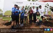 10 Ribu Trembesi Teduhkan 75 Kilometer Semarang - Batang - JPNN.COM
