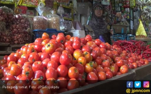 Harga Tomat dan Sayur Terjun Bebas, Pedagang Pusing