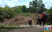 Potensi Karhutla Menurun, Manggala Agni Tetap Siaga - JPNN.COM