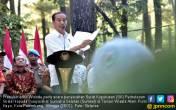 Presiden Serahkan SK Perhutanan Sosial kepada 1.900 KK - JPNN.COM