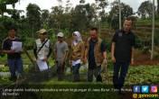 Kementan Dukung Jabar Bangun Desa Pertanian Organik - JPNN.COM