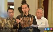 Tulang Rawan Buaya Bisa Obati Nyeri Persendian - JPNN.COM
