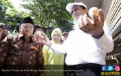 Mentan Tebar Ayam Kampung Petelur Unggul Untuk 11 Ribu RTM - JPNN.COM