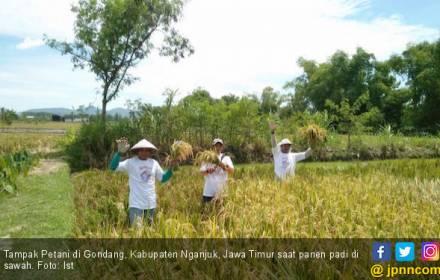 Terungkap! Jan Prince Serap Dua Permasalahan Saat Berdialog dengan Petani Mojokerto - JPNN.COM