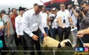 Di Cianjur, Mentan Lepas Ekspor Hortikultura dan Perkebunan - JPNN.COM