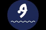 Akuatik - Loncat Indah (Aquatics Diving)